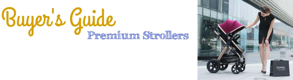 Expensive Strollers Guide